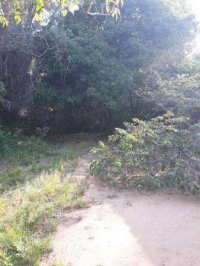 Terreno 5 hectáreas y 1/4 en Ypacaraí