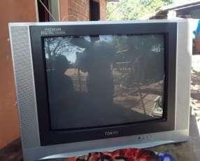 Tv tokyo de 21 pulgadas