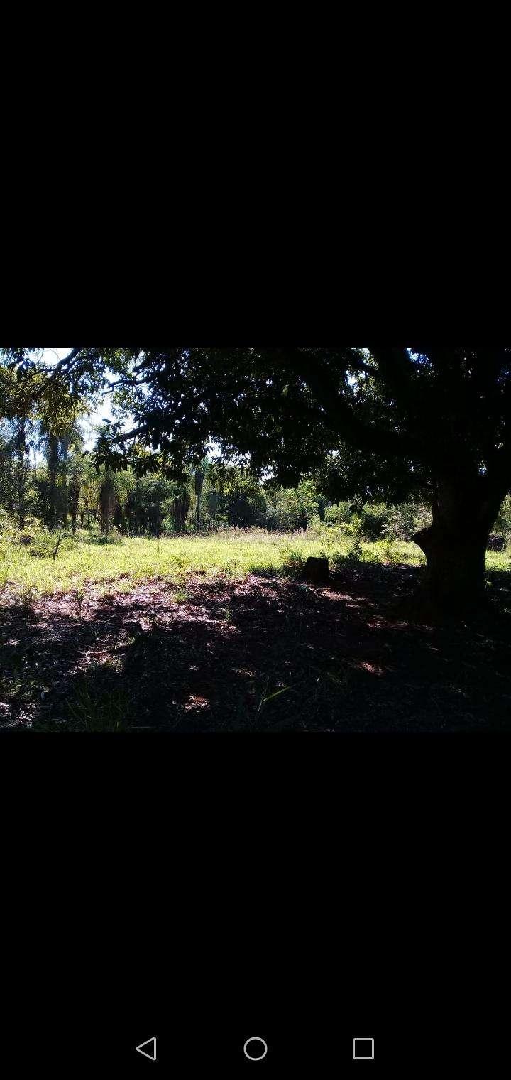 10 hectáreas en Valenzuela - 1