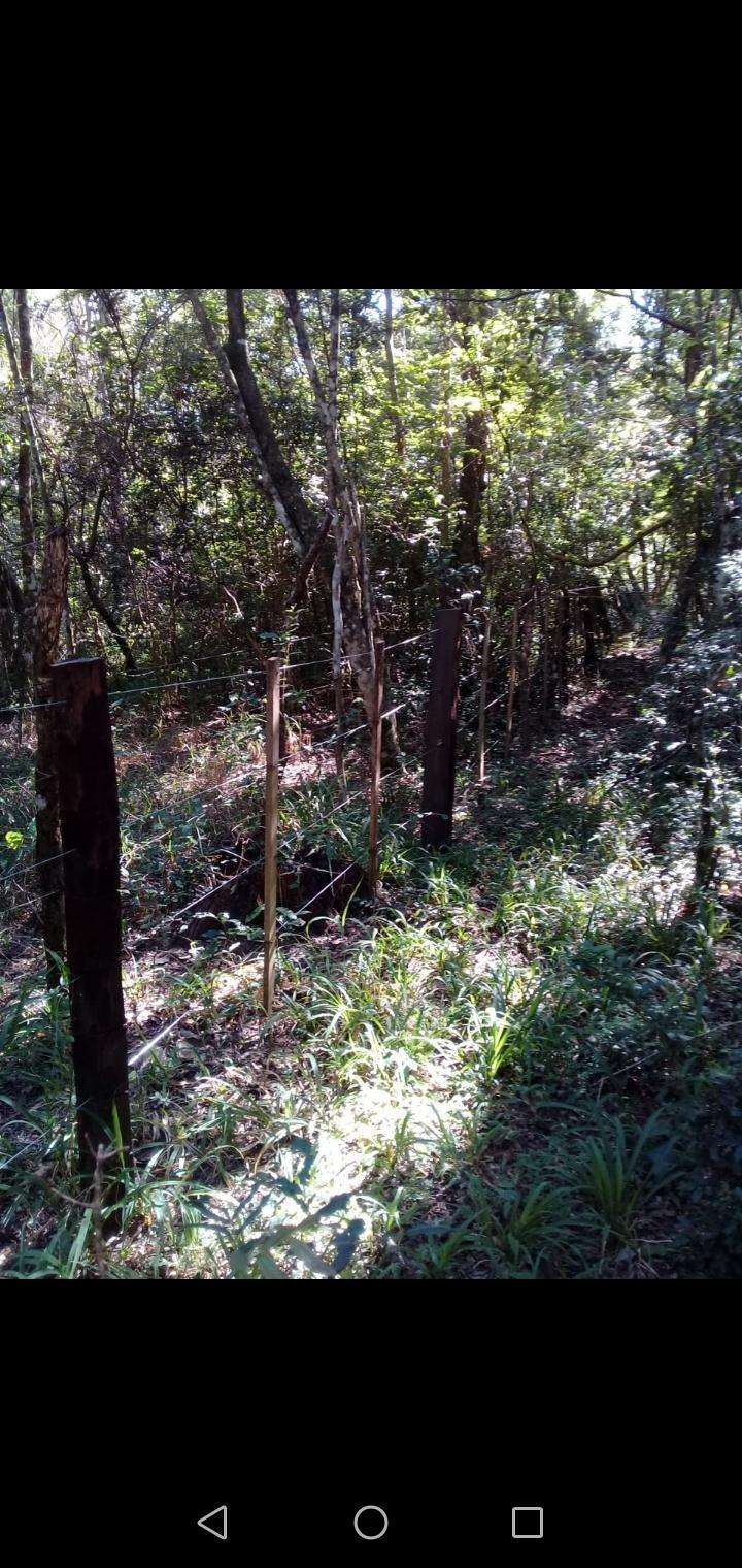 10 hectáreas en Valenzuela - 2