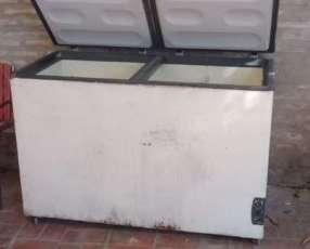 Visicooler y 1 freezer de 2 puertas