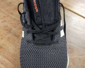 Champion Adidas Original
