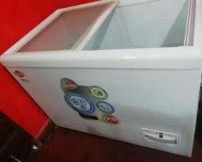 Congeladora Tokyo 450 litros