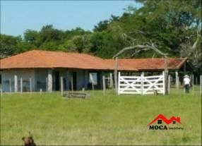 Estancia en San Ignacio Misiones