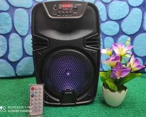 Mini Karaoke de 6 pulgadas