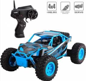 Rally Monster 4x4