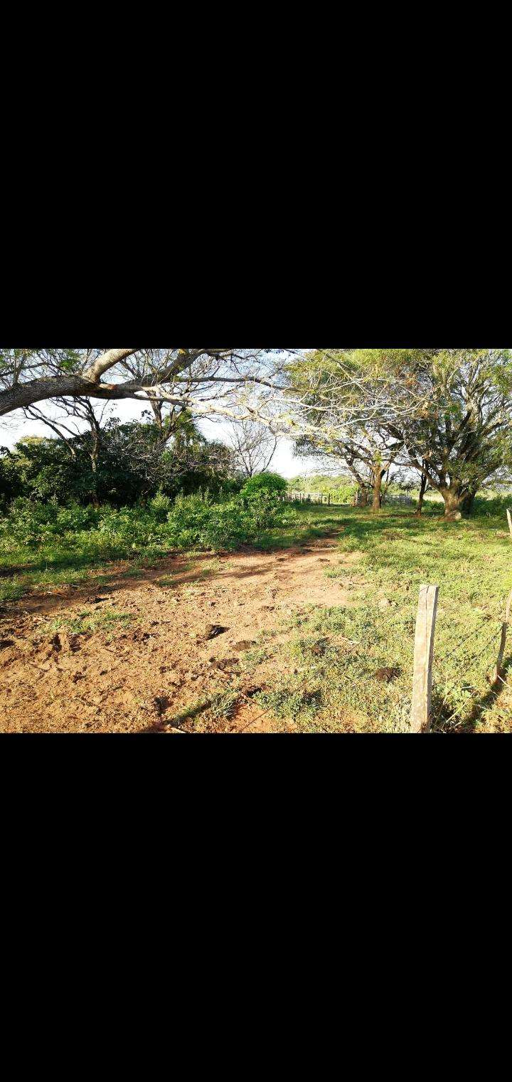 27 hectáreas en Artigas Itapúa - 0