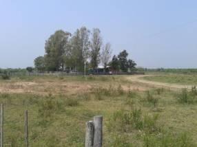 Terreno de 3.750 hectáreas