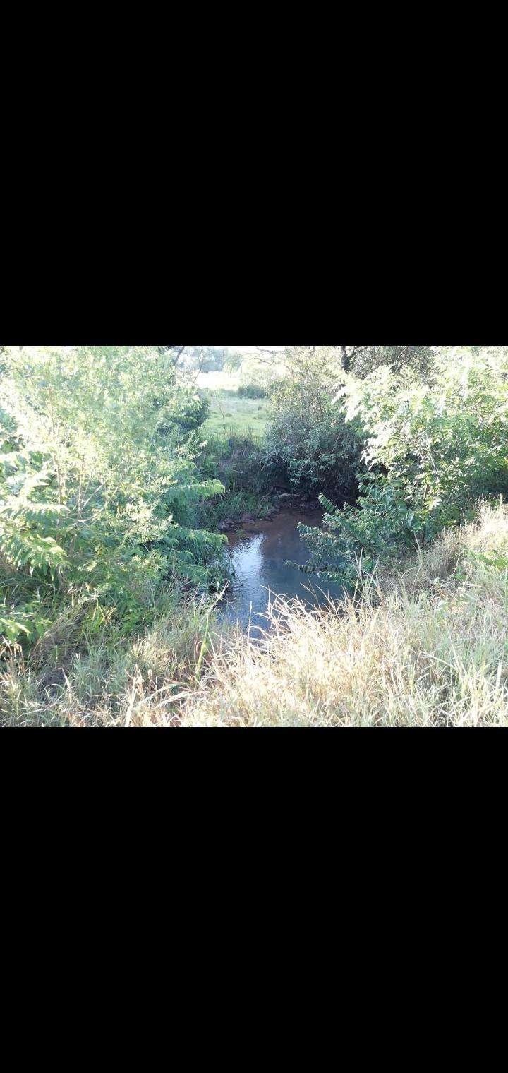 27 hectáreas en Artigas Itapúa - 1