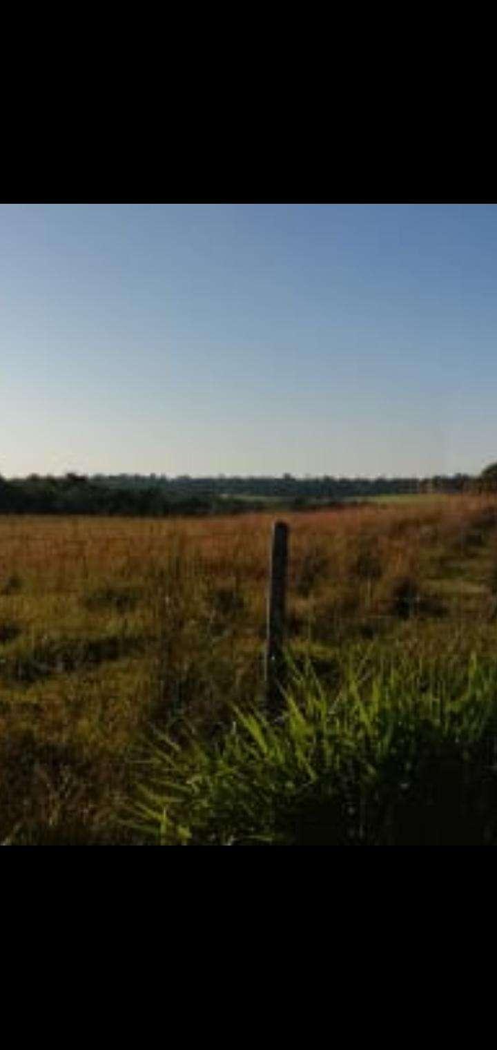 27 hectáreas en Artigas Itapúa - 3