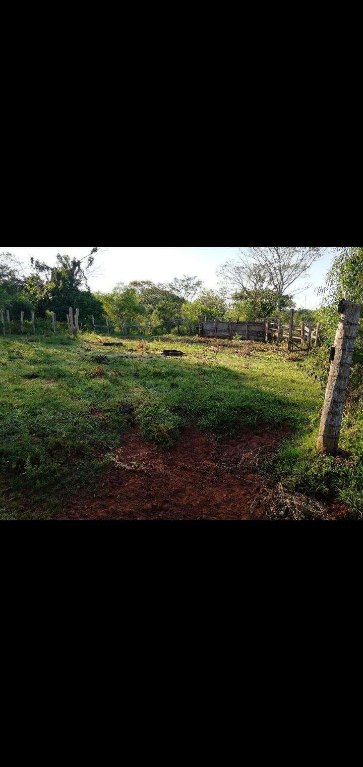 27 hectáreas en Artigas Itapúa - 4