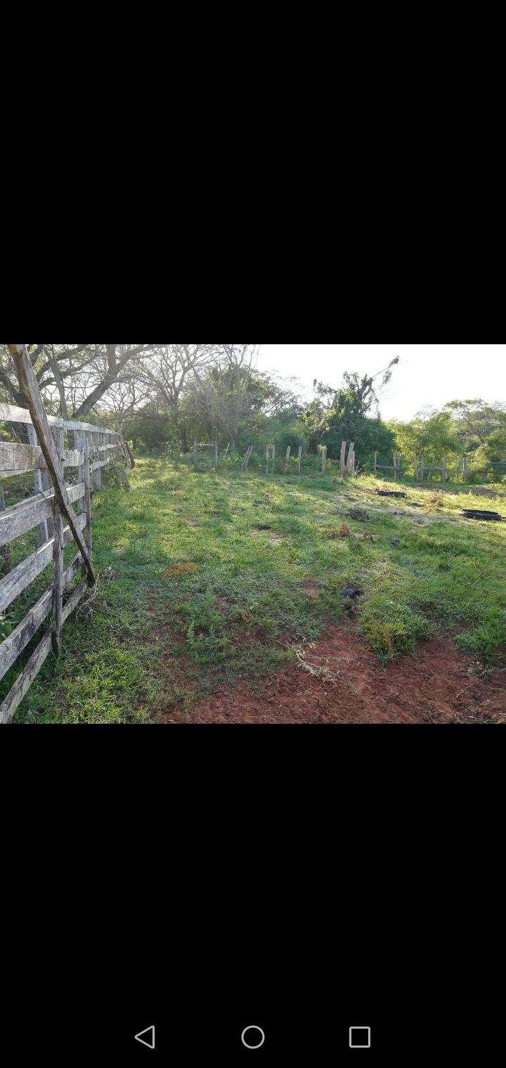 27 hectáreas en Artigas Itapúa - 5