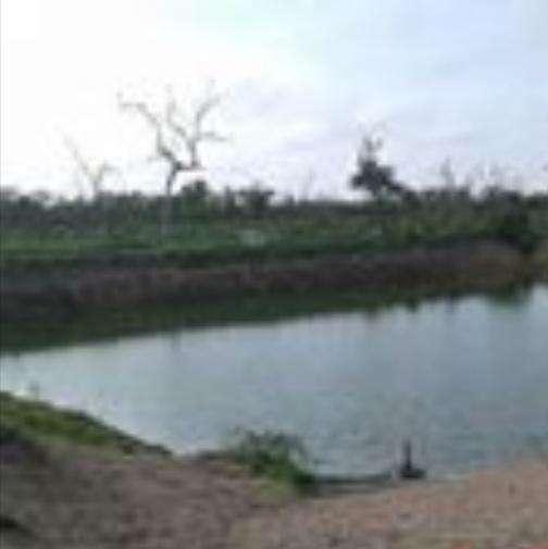 2700 hectáreas en Chaco - 1