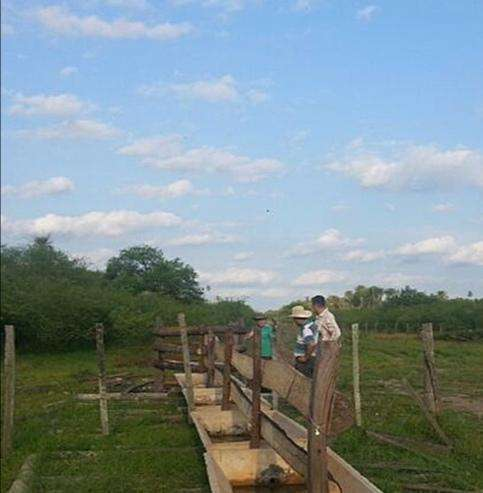 2700 hectáreas en Chaco - 4