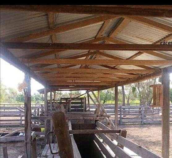 2700 hectáreas en Chaco - 5