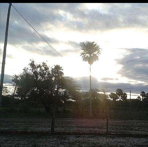 2700 hectáreas en Chaco - 7