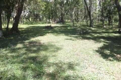54 hectáreas con granja en Tobatí - 2