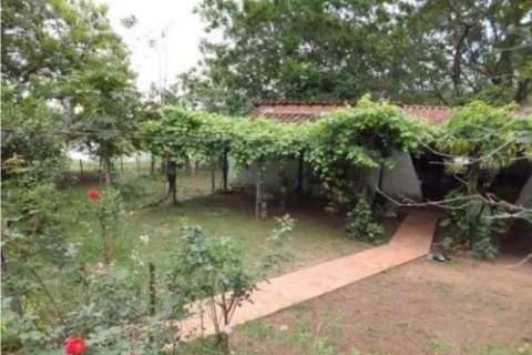 54 hectáreas con granja en Tobatí - 4