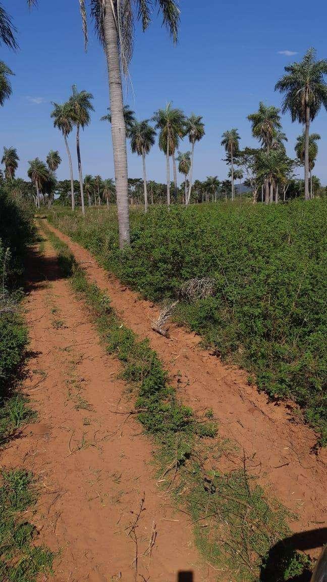 Terreno de 4,5 hectáreas en Caacupé Ypucu - 1