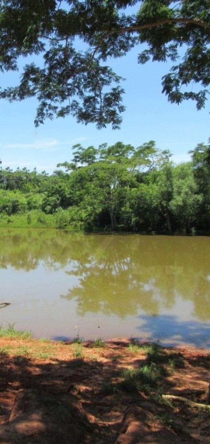 1600 hectáreas en San Pedro - 2