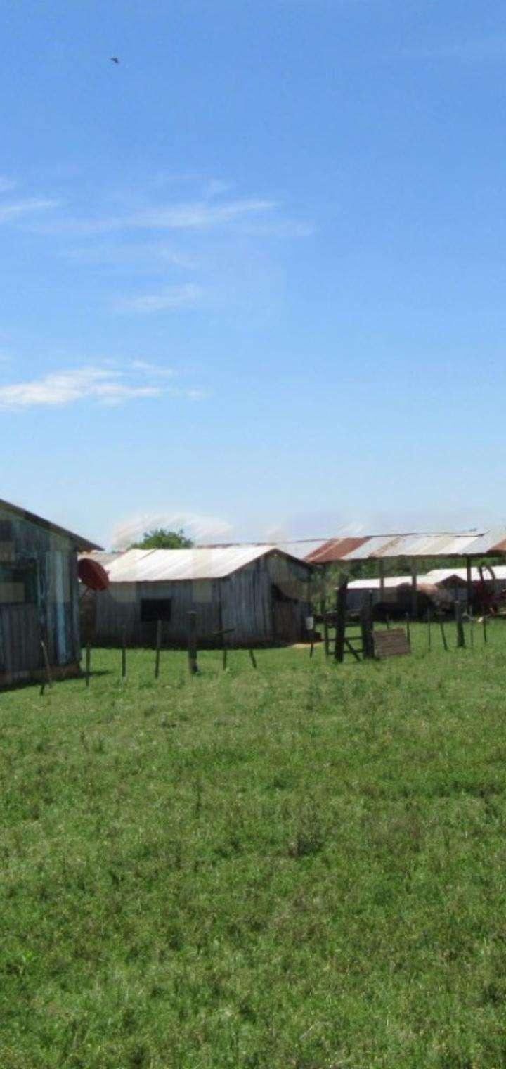 1600 hectáreas en San Pedro - 7