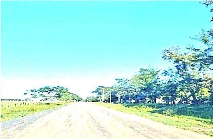 Terreno de 5 hectáreas y media en Benjamín Aceval - 2