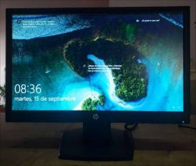 Monitores HP LCD 19 pulgadas seminuevos