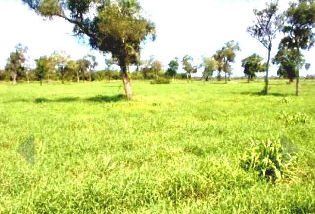 58.000 hectáreas en Alto Paraguay - 1