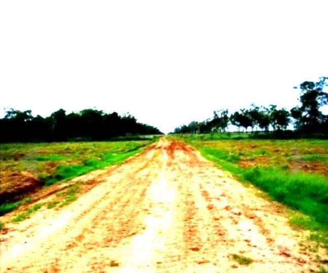 58.000 hectáreas en Alto Paraguay - 2