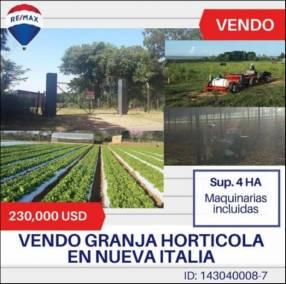 Granja horticultora en Nueva Italia