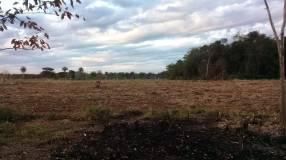 Campo en Mbuyapey Paraguarí