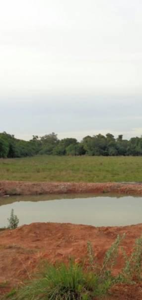 Estancia de 400 hectareas