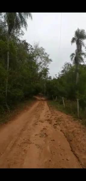 22 hectáreas en Ytu Caacupé