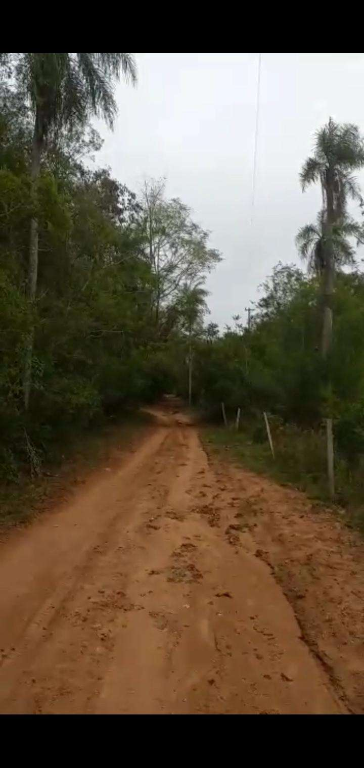 22 hectáreas en Ytu Caacupé - 0