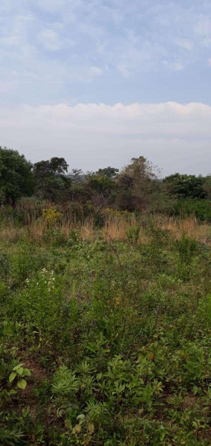Terreno de 1,5 hectáreas en Capiatá - 1