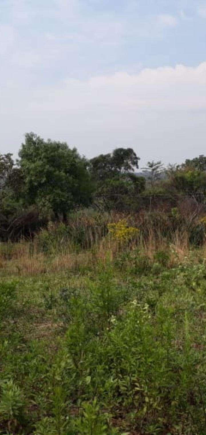 Terreno de 1,5 hectáreas en Capiatá - 3
