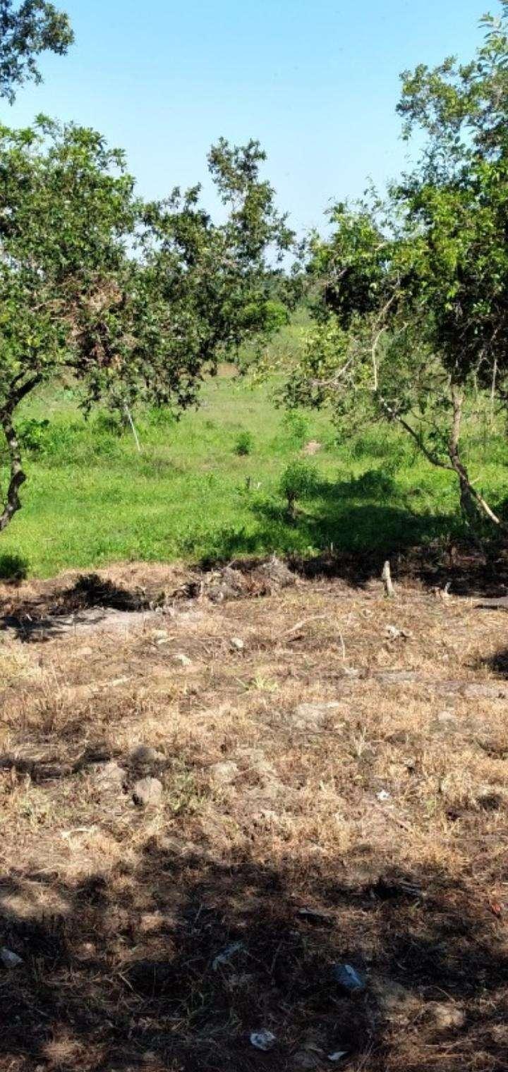 Terreno de 1,5 hectáreas en Capiatá - 4