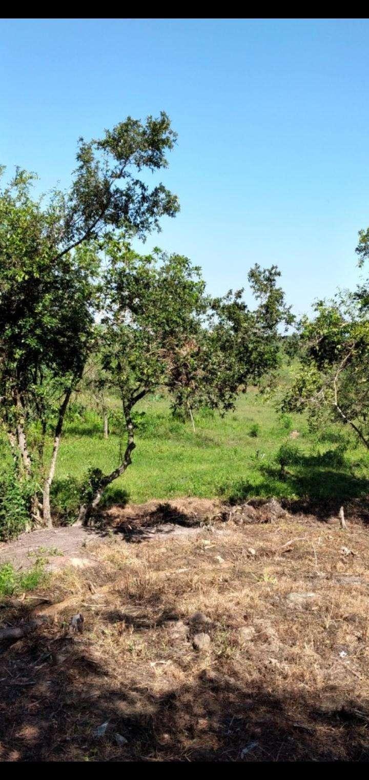 Terreno de 1,5 hectáreas en Capiatá - 5