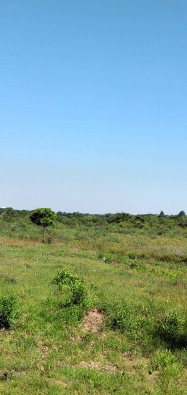 Terreno de 1,5 hectáreas en Capiatá - 6