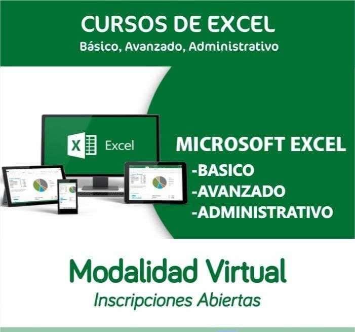Curso de Excel profesional virtual - 0