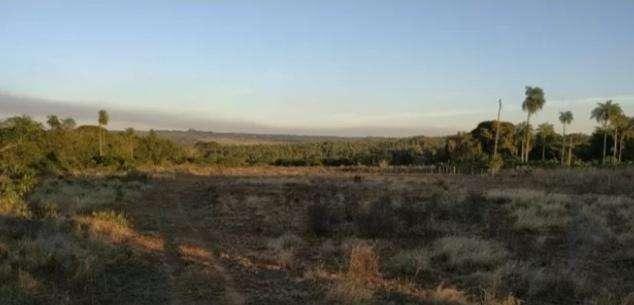 Terreno en Altos de 4 hectáreas - 1