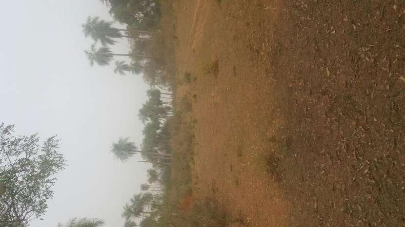 7 hectáreas en Pirayú Cerro Vera a 1000 metros de la ruta principal - 4