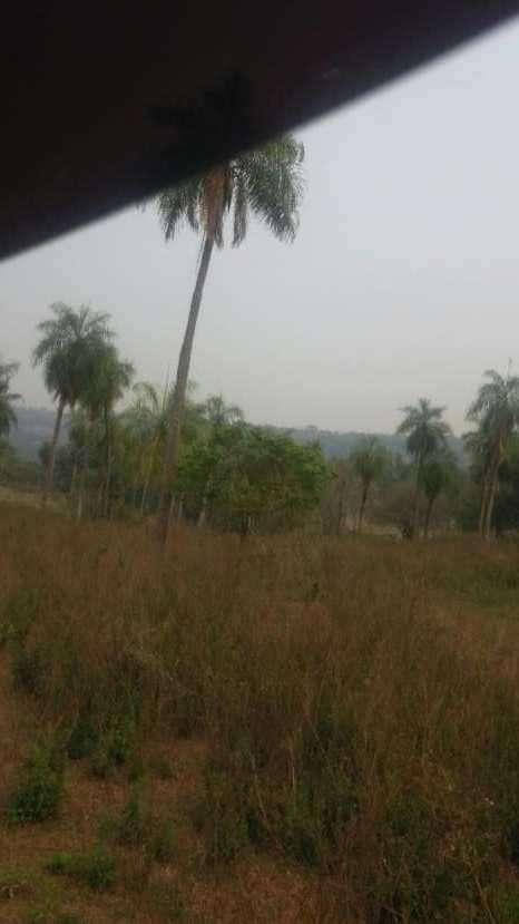 7 hectáreas en Pirayú Cerro Vera a 1000 metros de la ruta principal - 0
