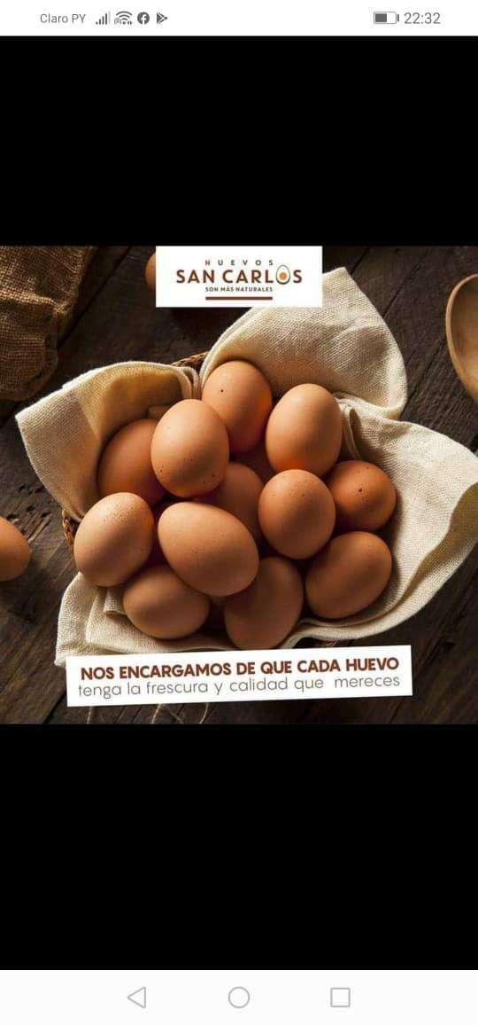 Huevos San Carlos - 0