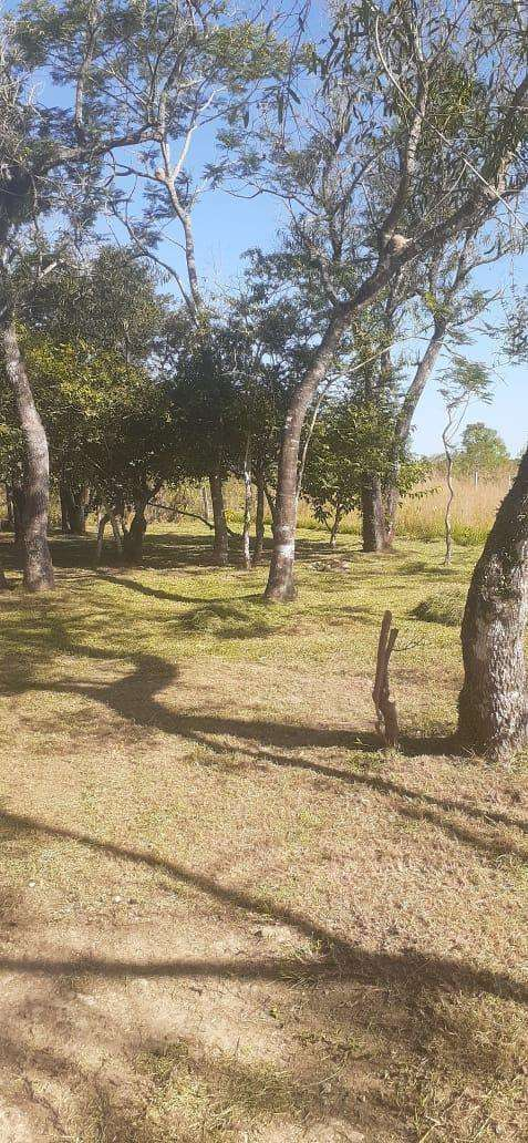 10 terrenos juntos en Arroyos y Esteros - 2