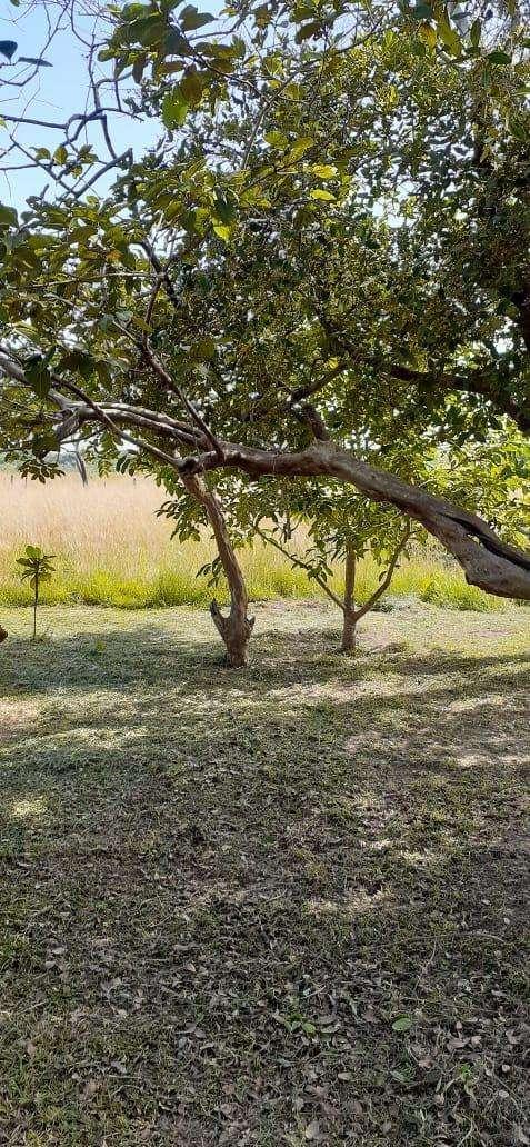 10 terrenos juntos en Arroyos y Esteros - 3