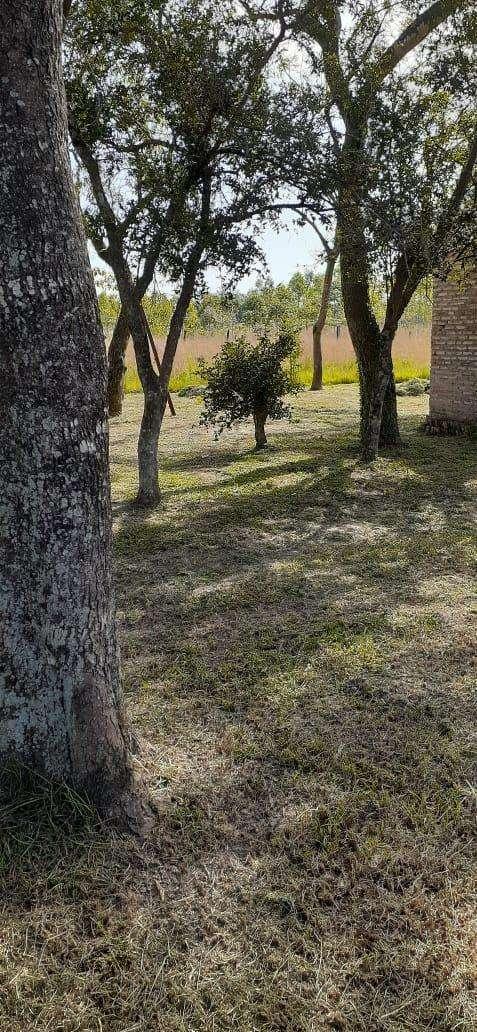 10 terrenos juntos en Arroyos y Esteros - 6