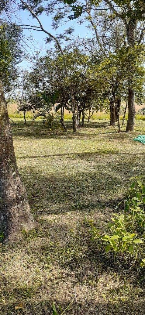 10 terrenos juntos en Arroyos y Esteros - 7