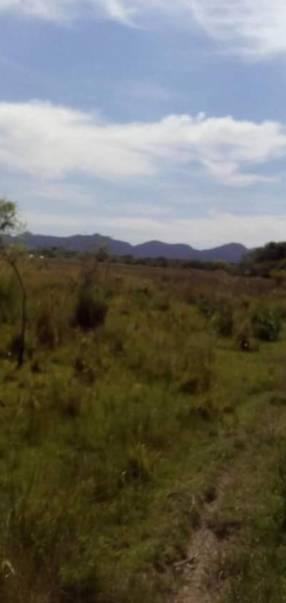 65 hectáreas en Tobatí
