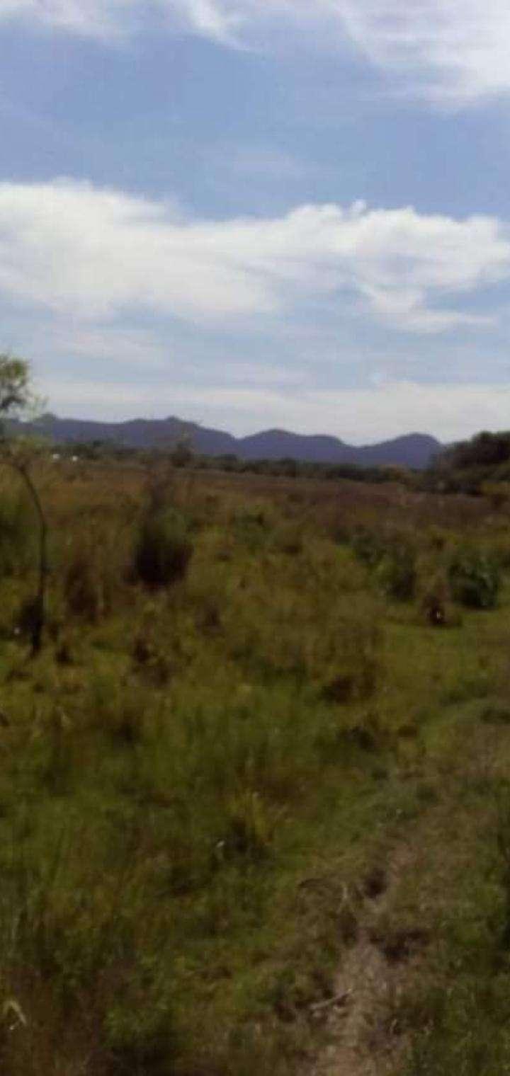 65 hectáreas en Tobatí - 0
